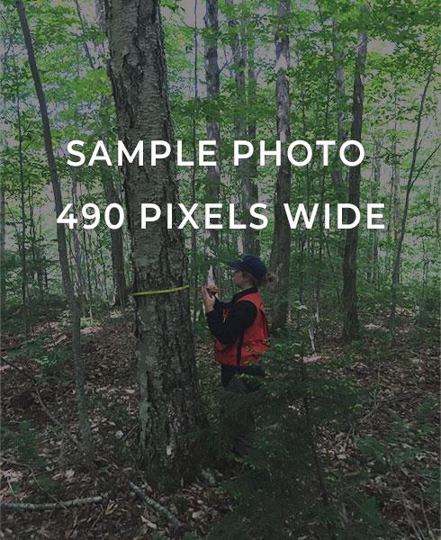 Sample_Photo