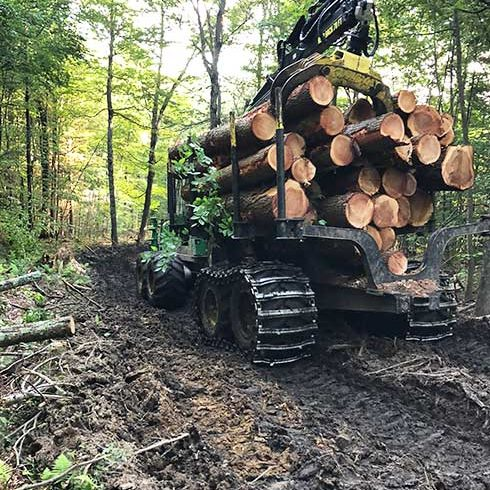 Connecticut_Timber_490W